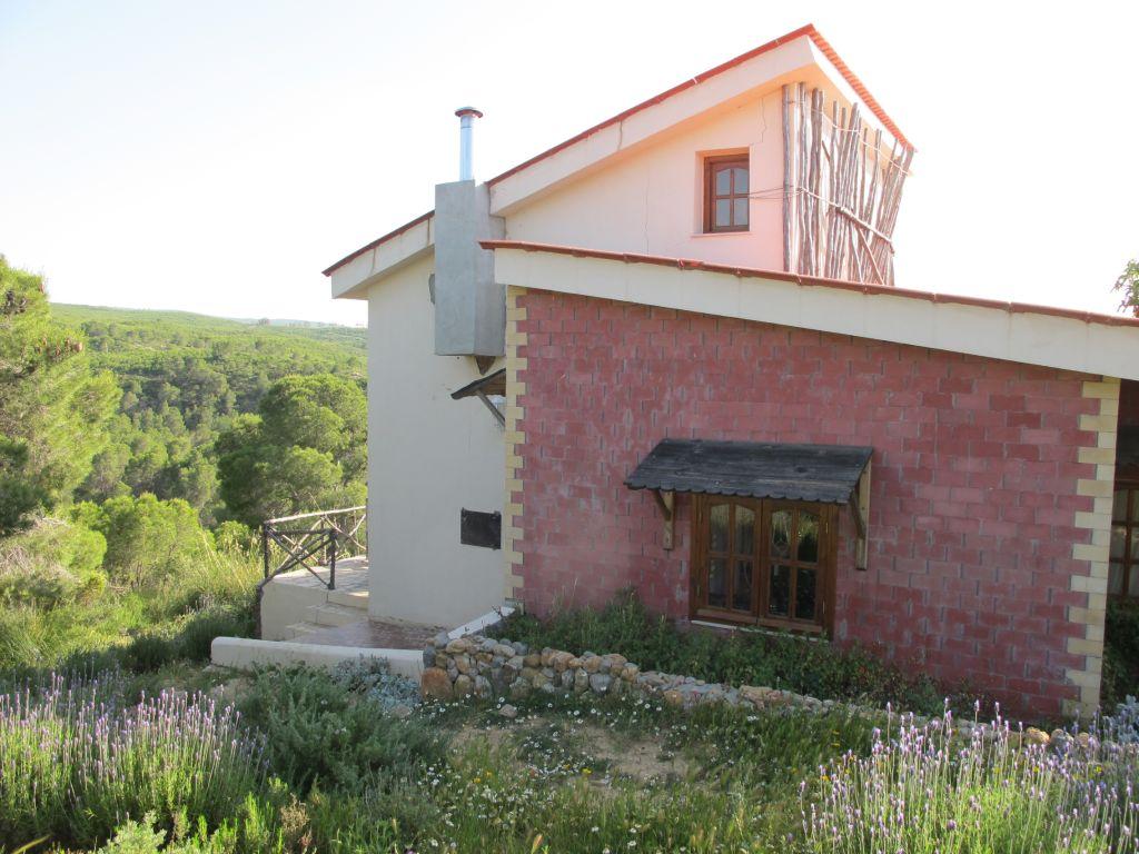 Casa cu lavanda Tunisia Villa Tabarka domeniul Ksar Ezzit