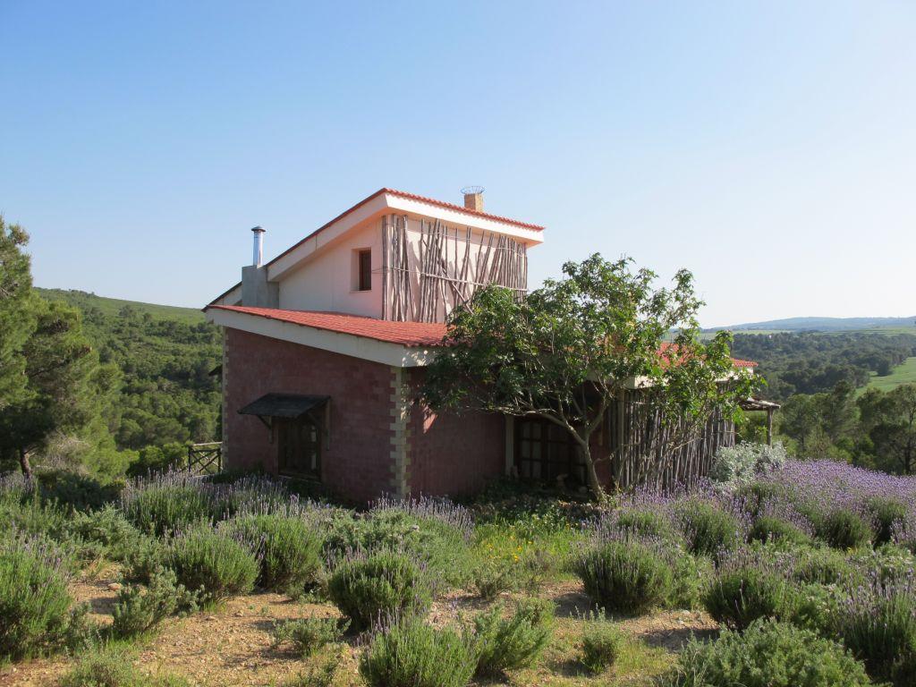 Casa cu lavanda Tunisia Villa Tabarka