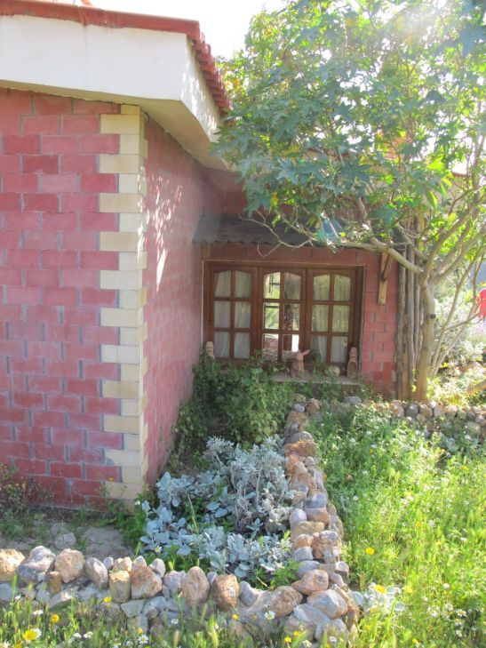 Gradina amenajata cu pietre si plante Villa Tabarka Tunisia