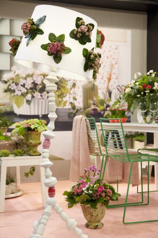 Kalanchoe hybrid este o planta putina pretentioasa care se preteaya in diferite aranjamente. O gasesti in variate culori.