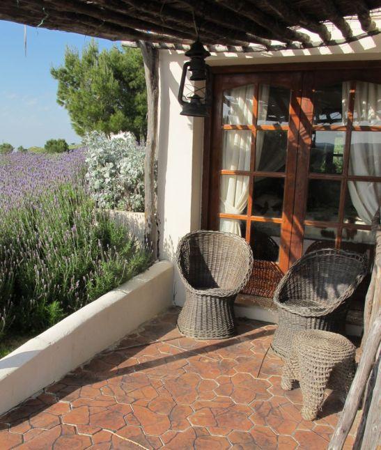 Terasa umbrita de la Villa Tabarka Ksar Ezzit din Tunisia