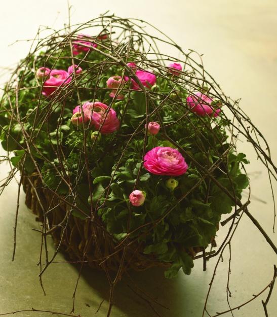 Aranjament cu ranunculus, floare propusa si de arh. Daniela Stelea de la Mood Giuveare florale. Foto: Floradania