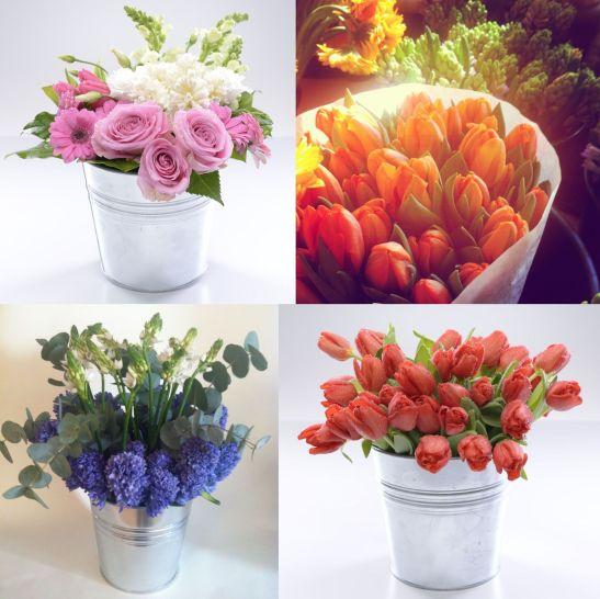 Propuneri de Dhaniel Nora de la Purple flowers & events