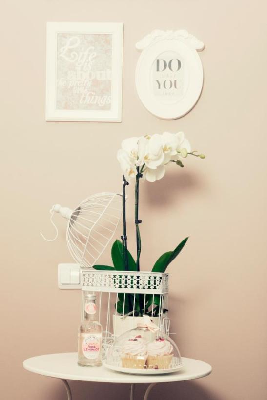 The Lovely Room (8)