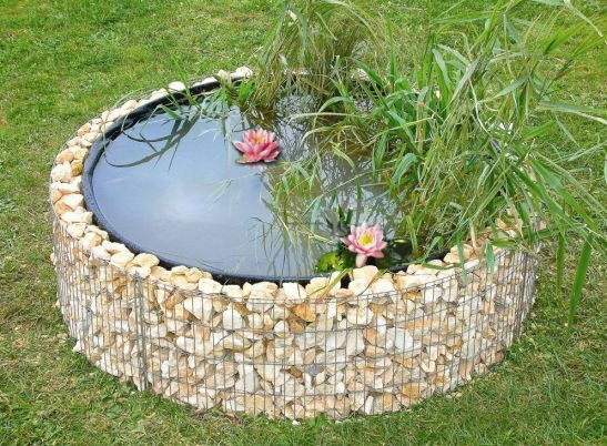 Bazin ornamental cu plante de apa Foto amenager-ma-maison
