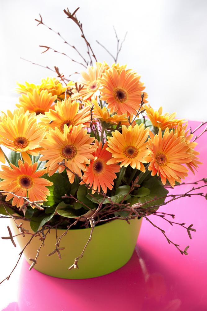 Un aranjament vesel cu Gerbera hybrid. Conteaza mult si o fata de masa la fel de colorata ca sa puna in evidenta portocaliul florilor si masca verde a ghivechiului