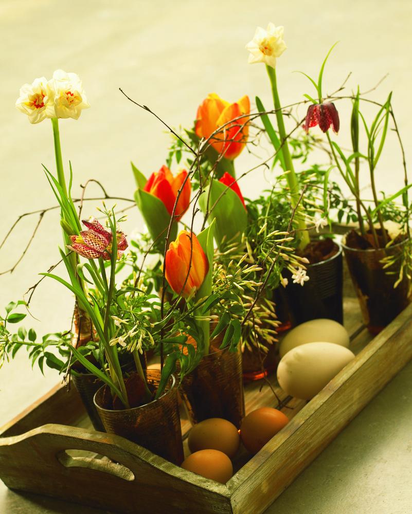 Un aranjament rustic elegant cu narcise si lalele puse in pahare colorate alaturi de oua