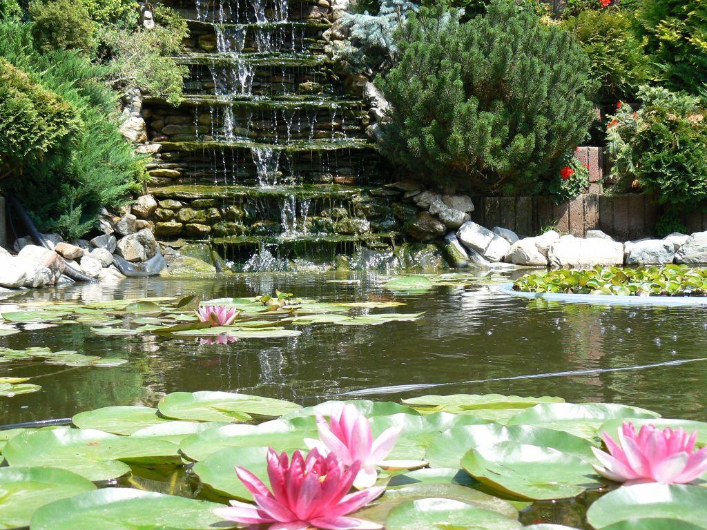 adelaparvu.com despre belle jardin 6
