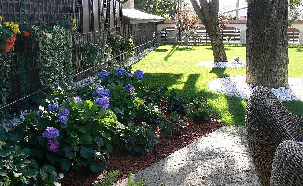 adelaparvu.com despre gradina Belle Jardin Iasi (7)