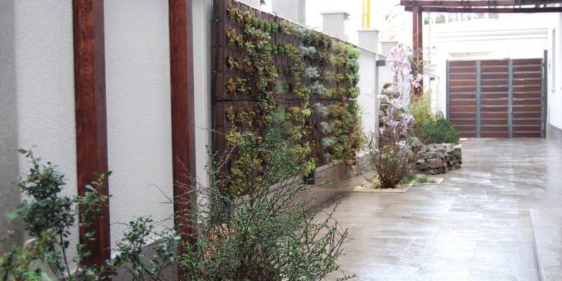 Gradina verticala amenajata de Arta Gradinilor intr-o curte urbana din Bucuresti