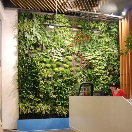 Gradina verticala amenajata de Arta Gradinilor la Nesscafe Milano din Ploiesti Shopping City