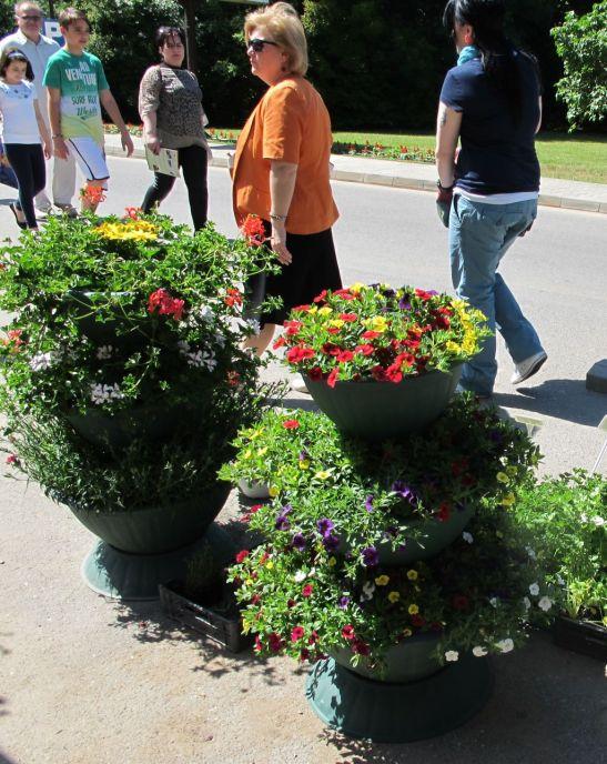 Jardiniere etajate cu tot cu flori la pret de 300 lei d ela Fabrica de flori Natura din Ploiesti