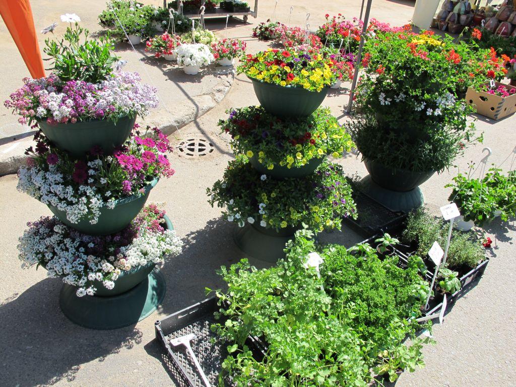 Jardiniere etajate cu tot cu flori pret 300 lei de la Fabrica de flori Natura din Ploiesti