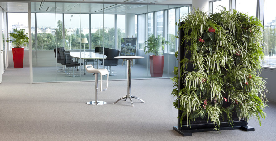 Panou special pentru gradina verticala de montat in spatiu de birou. Foto By Nature Design
