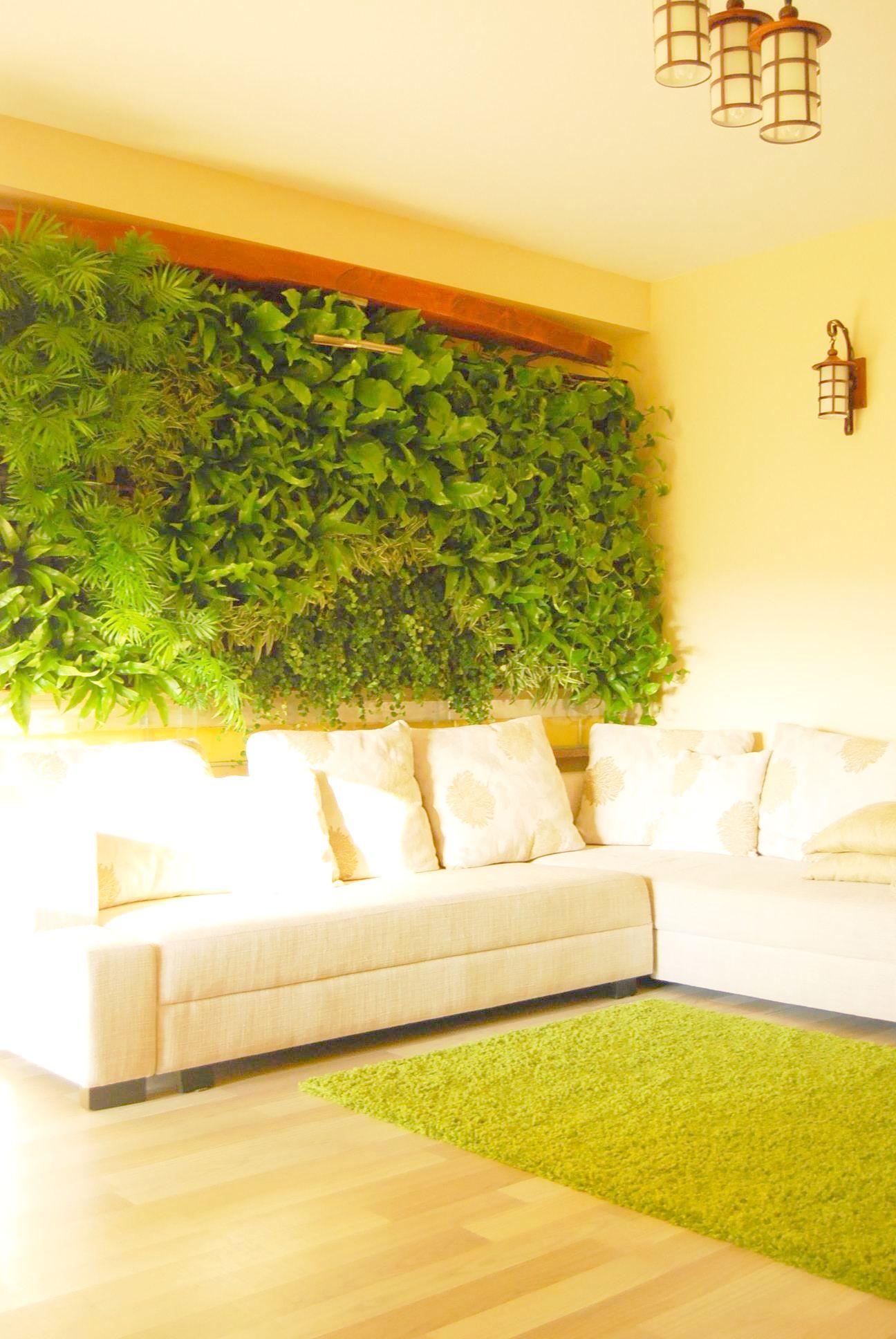 Perete decorat cu plante de catre Arta Gradinilor intr-un living de bloc din Bucuresti