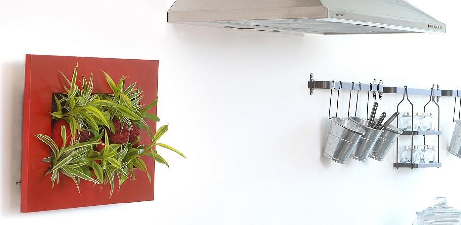 Produsele Wallflower disponibile si la noi prin Arta Gradinilor. Foto By Nature Design