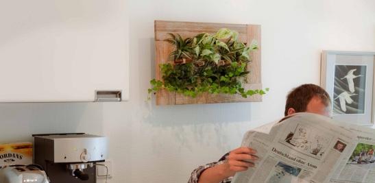 Tablou viu cu plante. Foto By Nature Design