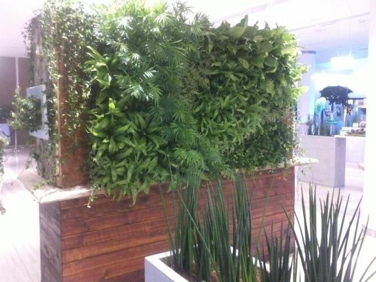 Tablourile cu plante si peretii imbracati cu plante transforma spatiile comerciale. Lucrare executata de Arta Gradinilor