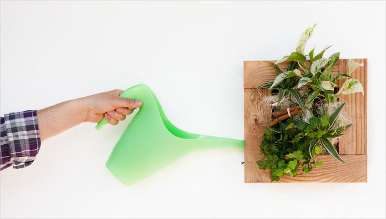 Udarea plantelor se face prin intermediul rezervorului care trebuie alimentat. Foto By Nature Design
