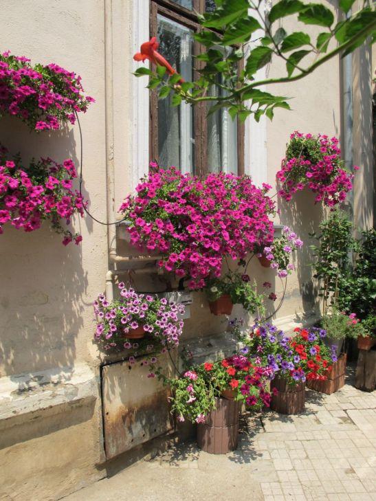 adelaparvu.com despre gradini urbane in Bucuresti 5