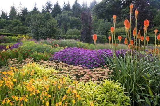 Speciile de Crocosmia 'Columbus', Sedum, Kniphofia, Monarda, în grădina RHS Garden Rosemoor din Devon, Marea Britanie