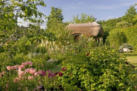 Borduri de Papaver, The Cottage Garden cu Cercis, barbatus digitalis și Dianthus în fața casei de vacanță din grădina RHS Rosemoor din Devon, Marea Britanie
