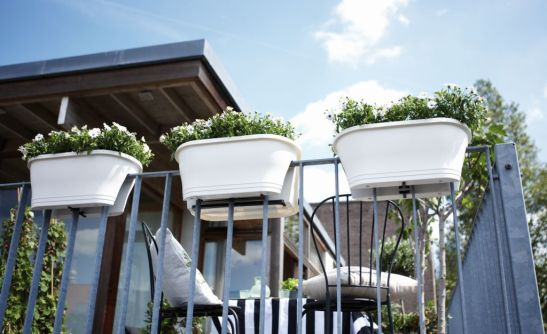 Jardiniere Corsica model pe alb