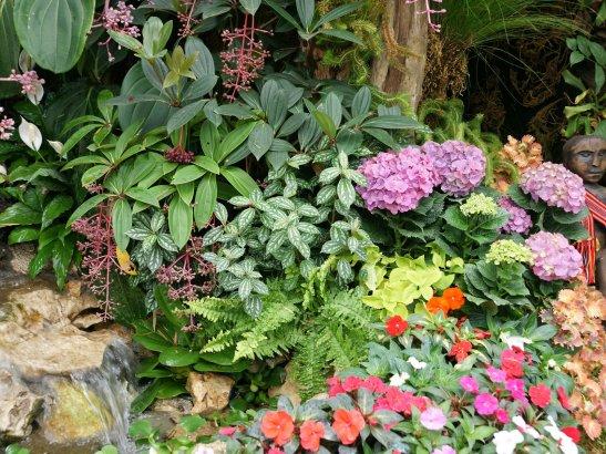 adelaparvu-com-despre-gradini-tropicale