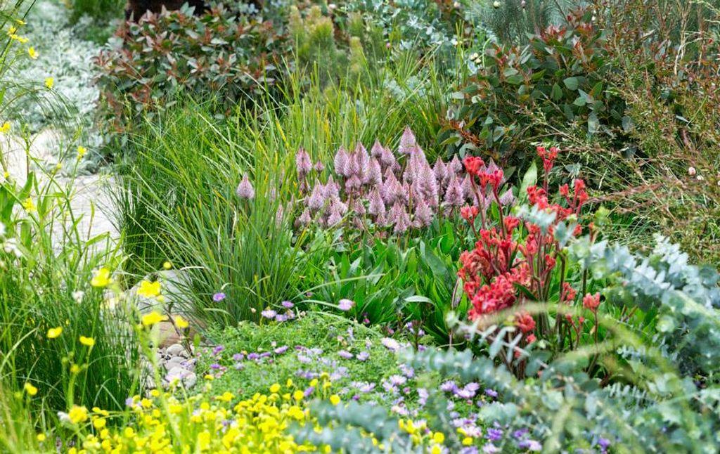 Flori in gradina creata de Phillip Johnson, Foto © Patrick Redmond Photography