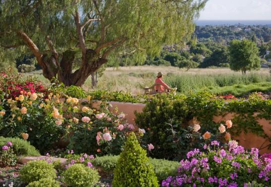 adelaparvu.com despre gradina formala cu flori  design Margie Grace (1)