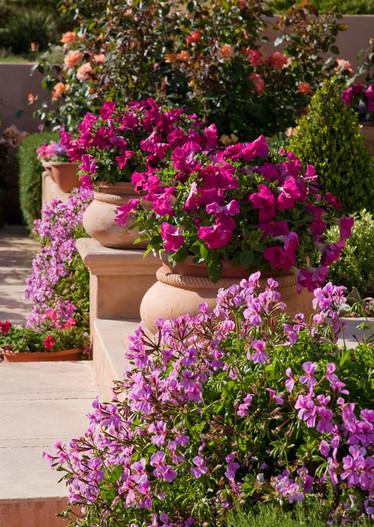 adelaparvu.com despre gradina formala cu flori  design Margie Grace (5)