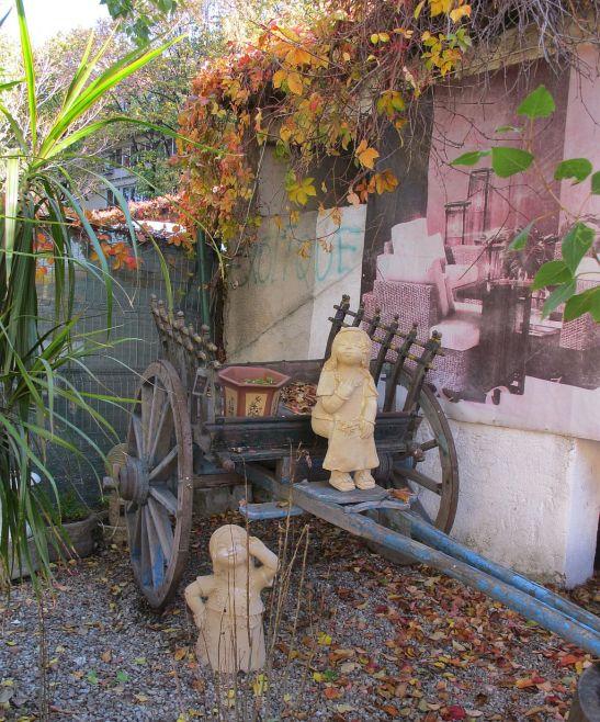 Caruta extotica decorativa pentru gradina