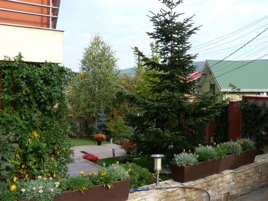 adelaparvu.com despre gradina unei case de familie la Iasi peisagist Claudiu Ivascu (4)
