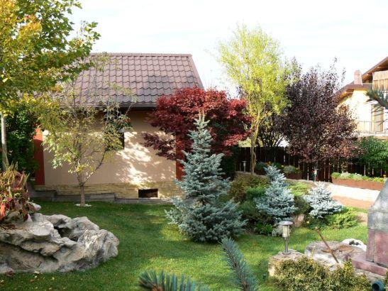 adelaparvu.com despre gradina unei case de familie la Iasi peisagist Claudiu Ivascu (5)