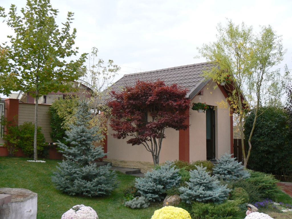 adelaparvu.com despre gradina unei case de familie la Iasi peisagist Claudiu Ivascu (7)