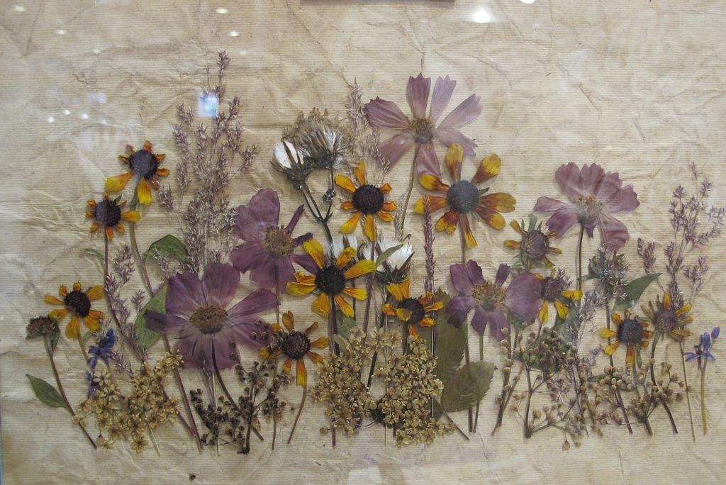 adelaparvu.com despre tablouri cu flori presate (9)