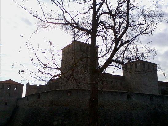 Cetatea Vidin